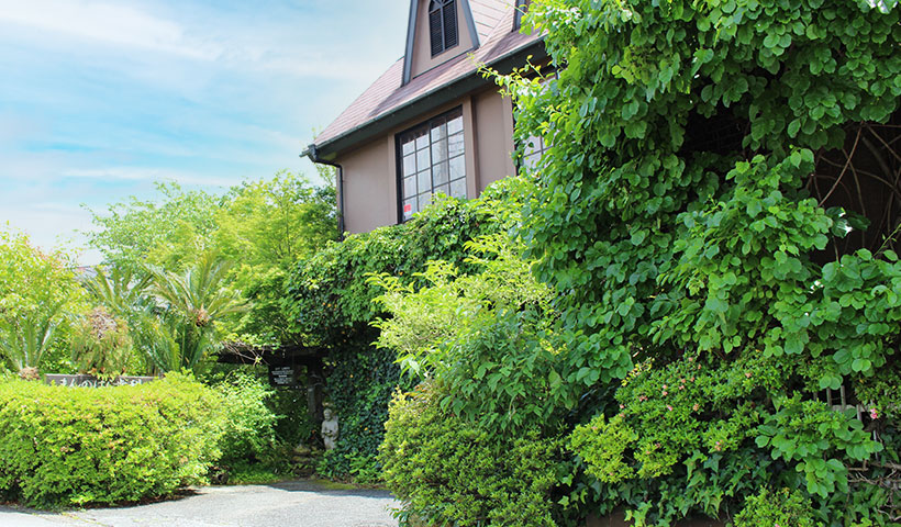 まんのはら歯科